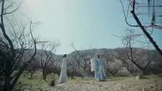 如果把《九张机》放在《凤囚凰》做片头曲更是完美!