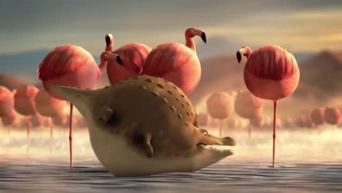 搞笑版的动物世界!