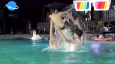 青春旅社王源游泳玩嗨了,耐心带小宝水里嬉戏化身暖男……