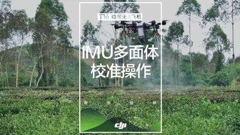 DJI大疆T16教学视频——IMU多面体校准