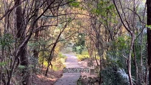 《海西福建》10、虎啸岩下的野生动物