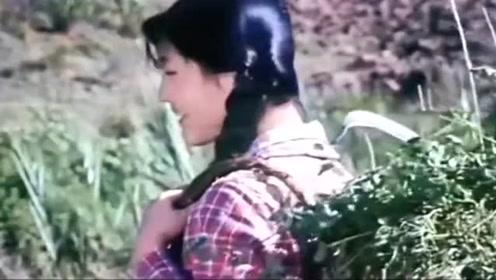 黄鹤翔经典老歌《九妹》,你知道视频里的女主