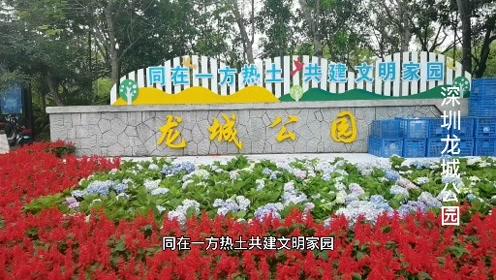 深圳龙城公园,它为市民朋友休闲游玩健身提供