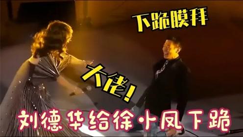 徐小凤才是乐坛大佬!梅艳芳翻唱她的歌曲走红,刘德华都跪地膜拜