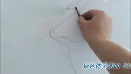 染色体艺术 写生 素描