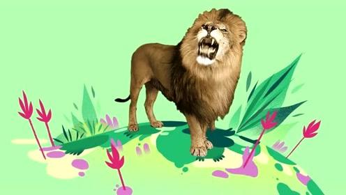 和狮子一起摇摆 动物主题儿歌