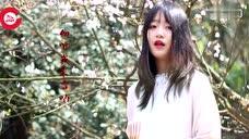 音乐红人计划 重庆音乐秀一首歌送给她 始于清末民初