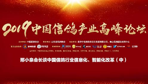 邢小泉会长谈中国信鸽行业信息化、智能化改革(中)