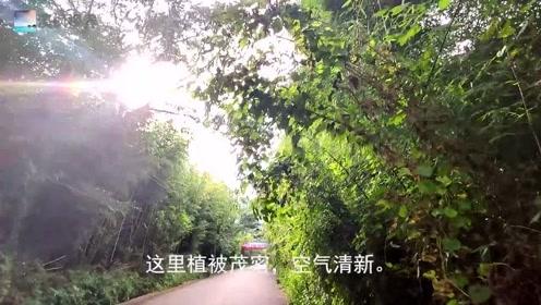 探访昆明市嵩明县的8大寺之首,可惜天色已晚未过三天门,旅游失败了