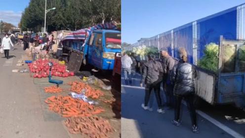 囤菜季!东北大娘雇车囤300斤大白菜:去年没吃够,今年多买100斤