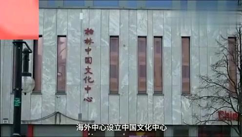 老外在中国:看中国美食韭菜盒子如何征服德国人,德国人吃完后表情亮了。
