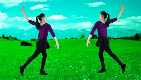 妃子红广场舞《梅花泪》舞姿轻盈曼妙,音乐好听舞蹈好看,太赞了