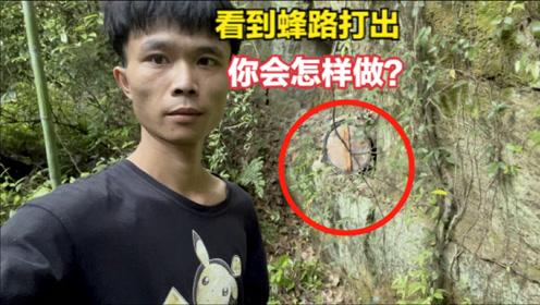 看诱蜂箱途中看到蜂路,小伙说如果是野蜂就收了,看完还是放弃了