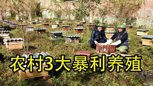 """农村又出3大""""暴利养殖""""行业,成品卖60元一斤,成本低利润高"""