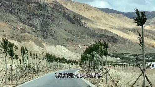 《天堂西藏》98、科迦寺,建在边境上的寺院