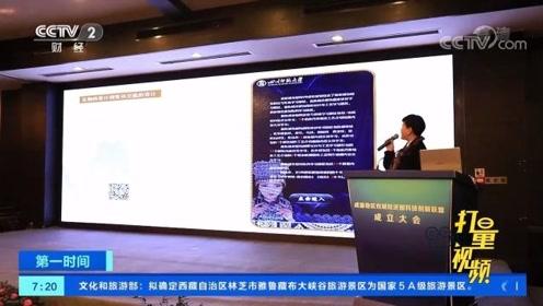 携手前进!成渝地区双城经济圈科技创新联盟在重庆成立