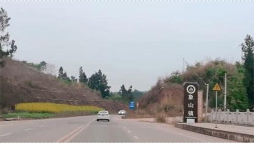 阳春三月,四川乡村公路,沿途风景如画