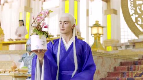 《枕上書》名場面合集  溫泉偶遇、鳳九變手帕,哪個是你的愛?