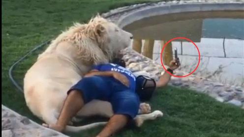 最长情的自拍:与狮共枕