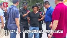 女司机路边停车竟摸到一只人脚 看汉版湄公河行动万里擒凶徒