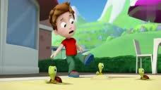 汪汪队立大功:亚力找到排球时狗狗发现小海龟,亚力以为是小恐龙