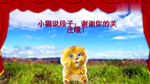 小猫讲笑话什么叫笑出眼泪,什么叫笑的肚子疼!太逗了