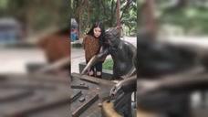 美女和铜人打麻将,看一遍笑一遍,厉害了!