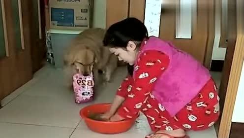 搞笑动物:主人感冒还在洗衣服,狗狗的反应让