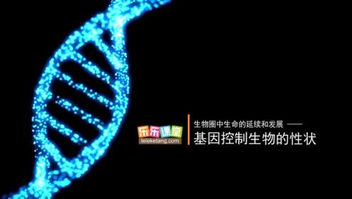 八520快三生物下册七单元第1章 生物的遗传和变异1.基因控制生物的性状
