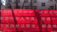 """女生节花样表白 高校男生""""花式""""秀横幅斗文采"""