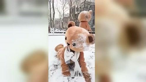 网红熊又来恶搞同伴,结果自己遭殃,太搞笑了