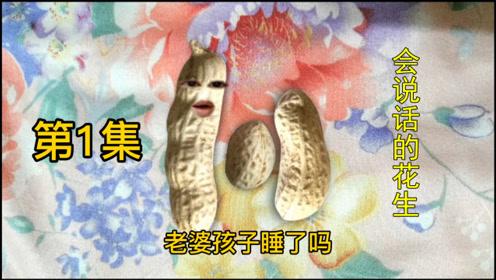 娱乐搞笑视频:花生也会说话了,这3个花生表演得怎样,哈哈!