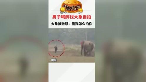 印度男子喝醉后找大象自拍,激怒大象死里逃生