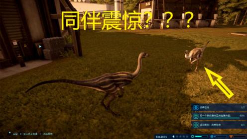 侏罗纪世界62:实验室孵化出了草原花纹的似鸵龙!