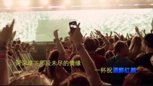 中文DJ劲爆舞曲冷漠《醉红颜》听醉了,心碎了,唱断前世今生