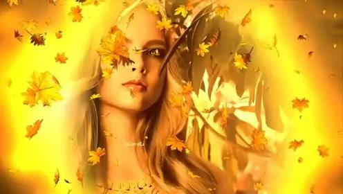 优美的轻音乐《秋叶飘零》让我抱一丝秋意,入梦!