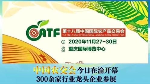 上游早上好丨中国农交会今日在渝开幕,300余家行业龙头企业参展