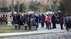 父母为子女操碎了心:玉渊潭公园周末父母代大龄子女相亲