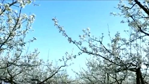 隰县城市宣传片