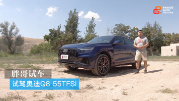 胖哥试车 试驾奥迪Q8 55TFSI - 大轮毂汽车视频