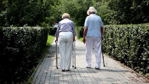 中国将在2022年左右进入老龄社会,中国65岁以上人口5年后将破2亿