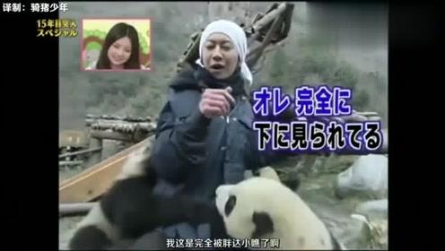 日本综艺 看到萌萌哒的熊猫, 美女一下子变痴汉脸, 想撸个痛快!