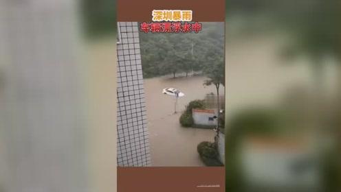 深圳暴雨!人站公交车顶,小车漂浮洪水中