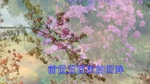 一首佛教音乐《佛说》佛教歌曲听听受益 佛教音乐净化心灵