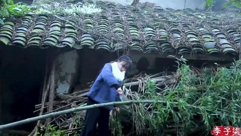 从细节上看李子柒的院子,并没有视频中那样完美!