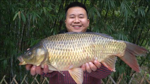"""这鱼8斤重,你们说是鲤鱼还是鲫鱼?炊二锅做""""麻麻鱼""""麻辣鲜香"""