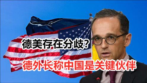 """与美国有分歧?德外长提出欧洲版""""印太战略"""""""