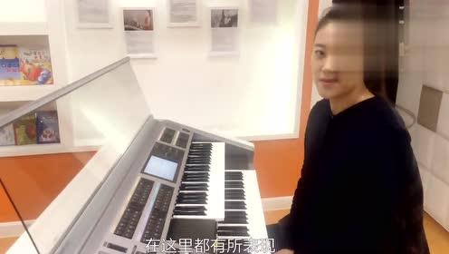 乐器之王~双排键电子管风琴