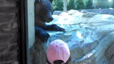 小孩跟大熊玩,没想到它还真的很配合,难道上辈子认识?