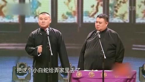 岳云鹏孙越相声《白蛇传》两人一唱一和,一般